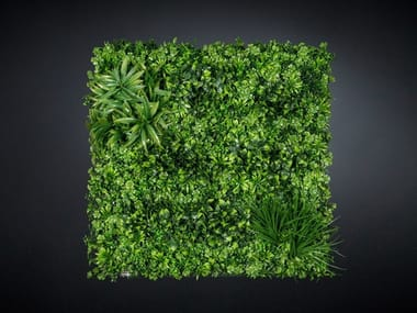Vegetal frame ECUADOR