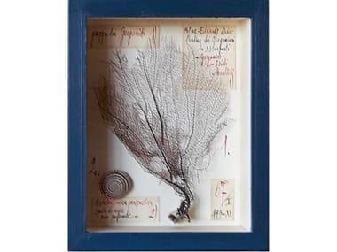 Quadro con conchiglie naturali e cornice in legno GORGONIA E CONCHIGLIE - CAS M