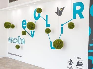 Vegetable decoration in moss KOKEDAMAS