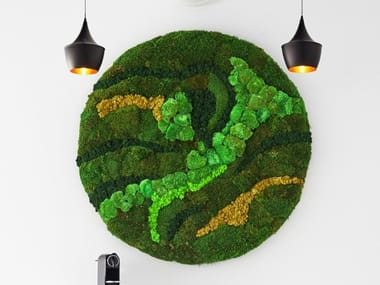 Frame / wall vegetal  in moss and stabilized plants MOSS&PLANTS BASIC MOSS