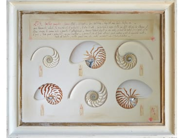 Decorative panel NAUTILUS