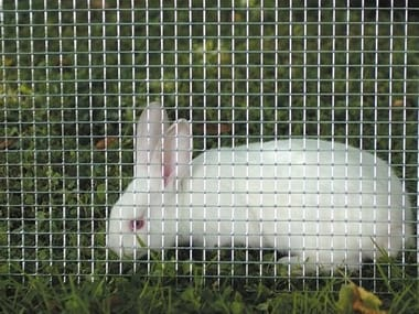 Square galvanized wire mesh fence for animal cages QUADRAMET