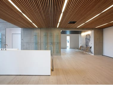 Ceiling tiles with wood effect DINESEN CEILING