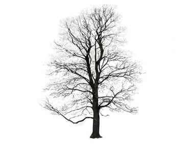 Quadro TREE WINTER