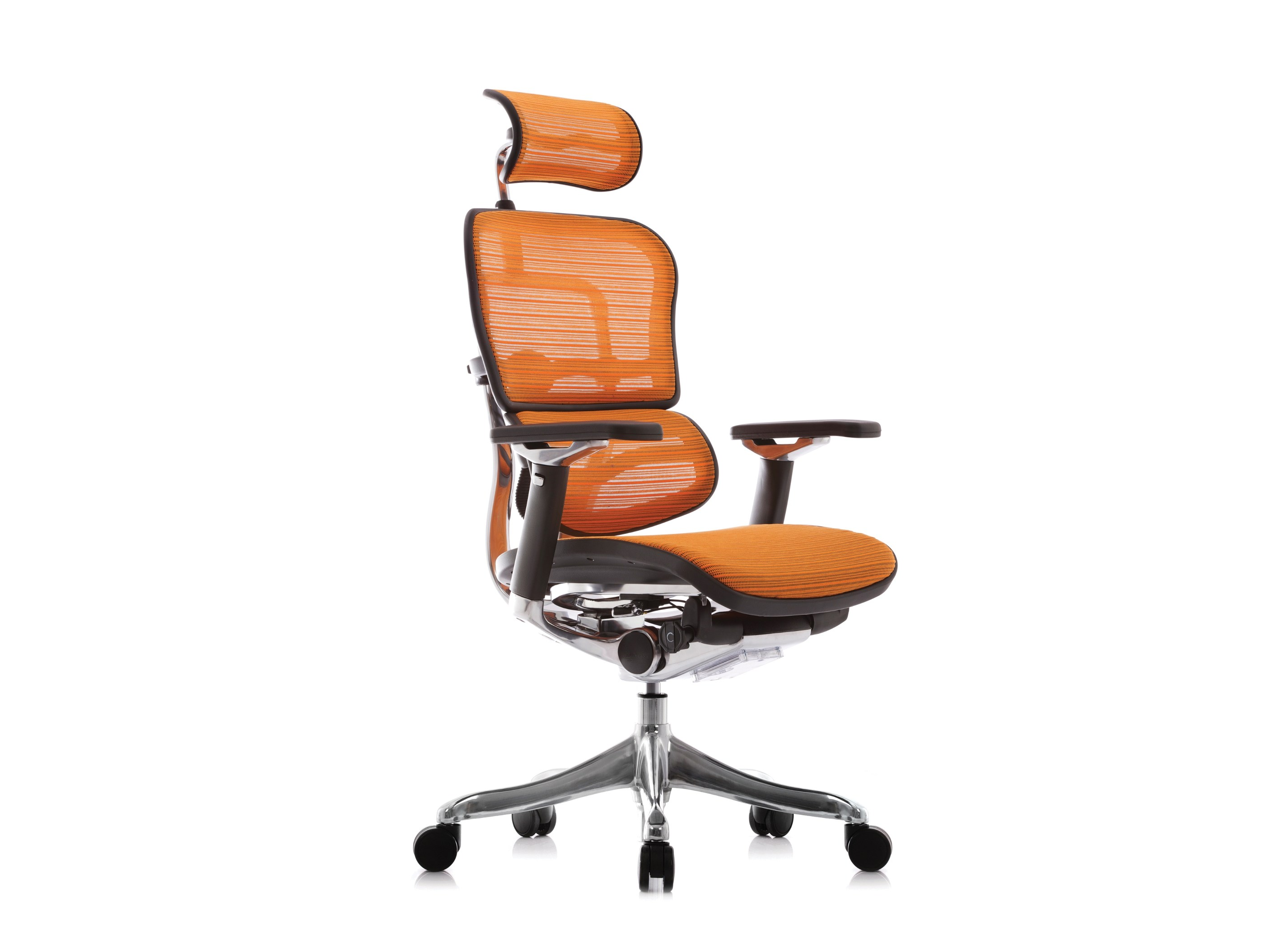 Swivel executive chair with 5 spoke base with armrests ERGOHUMAN