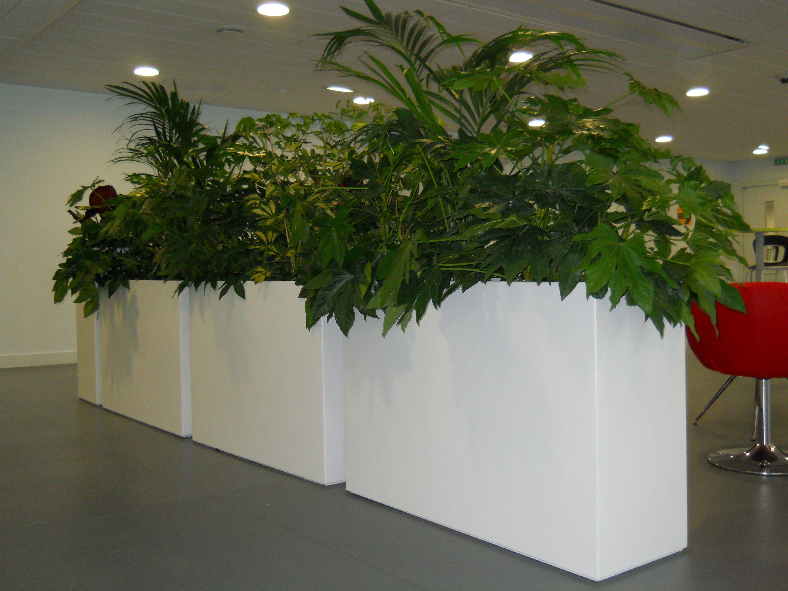 BAC INDOOR | Plant pot By IMAGE\'IN design Fabien Joly