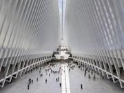 Lezioni Borrominiane: Calatrava, Botta e Portoghesi